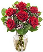 Kız arkadaşıma hediye 6 kırmızı gül  Zonguldak internetten çiçek siparişi