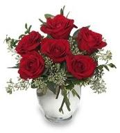 Vazo içerisinde 5 adet kırmızı gül  Zonguldak İnternetten çiçek siparişi