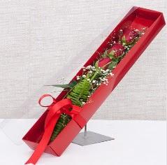 Kutu içerisinde 3 adet kırmızı gül  Zonguldak online çiçek gönderme sipariş