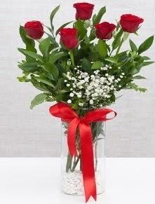 cam vazo içerisinde 5 adet kırmızı gül  Zonguldak anneler günü çiçek yolla