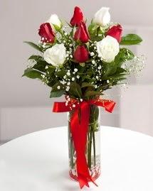 5 kırmızı 4 beyaz gül vazoda  Zonguldak anneler günü çiçek yolla