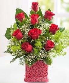Cam içerisinde 9 adet kırmızı gül  Zonguldak internetten çiçek satışı