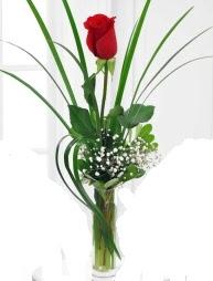 Cam içerisinde 1 kırmızı gül  Zonguldak çiçek gönderme sitemiz güvenlidir