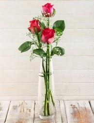 Cam içerisinde 3 kırmızı gül  Zonguldak çiçek satışı