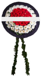 mozele çiçeği  Zonguldak hediye sevgilime hediye çiçek