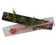Zonguldak hediye çiçek yolla  3 adet gül.kutu yaldizlidir.