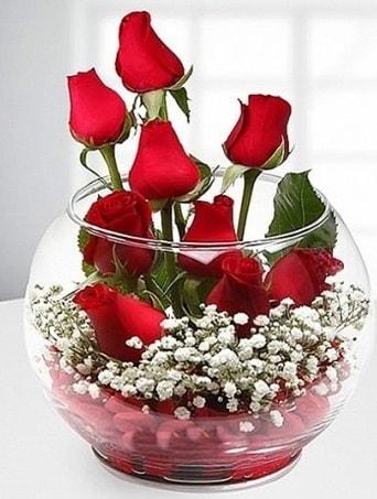 Kırmızı Mutluluk fanusta 9 kırmızı gül  Zonguldak çiçek siparişi sitesi