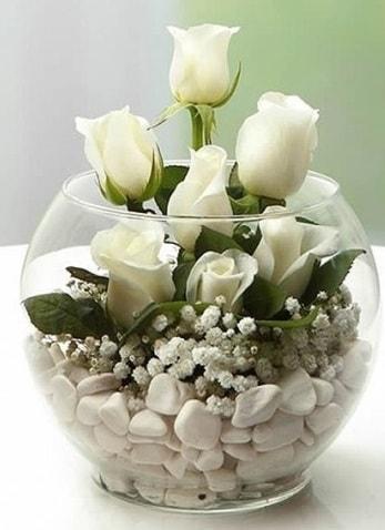 Beyaz Mutluluk 9 beyaz gül fanusta  Zonguldak çiçek siparişi sitesi