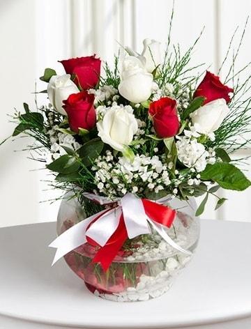 Aşk Küresi  5 beyaz 5 kırmızı gül fanusta  Zonguldak internetten çiçek satışı