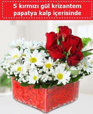 mika kalp içerisinde 5 kırmızı gül papatya  Zonguldak çiçek gönderme