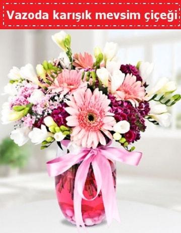 Vazoda karışık mevsim çiçeği  Zonguldak çiçek , çiçekçi , çiçekçilik