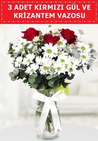 3 kırmızı gül ve camda krizantem çiçekleri  Zonguldak çiçek gönderme