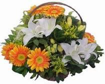 Zonguldak online çiçekçi , çiçek siparişi  sepet modeli Gerbera kazablanka sepet